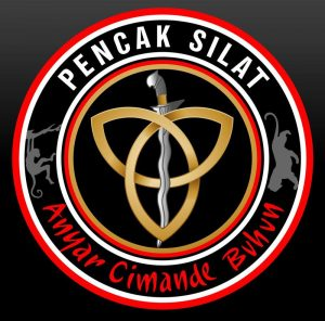 Pencak Silat Indonesian traditional art